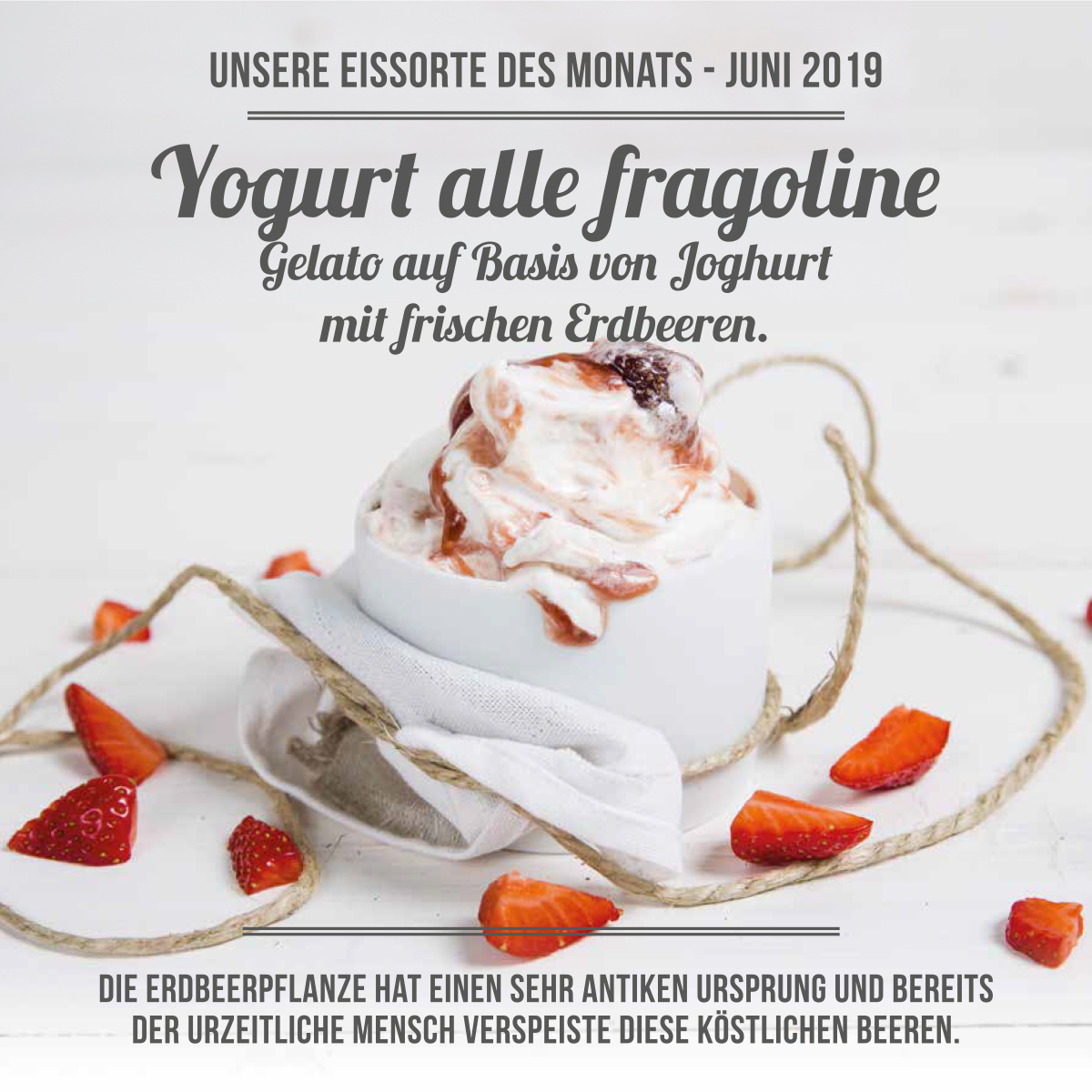 Yogurt alle fragoline